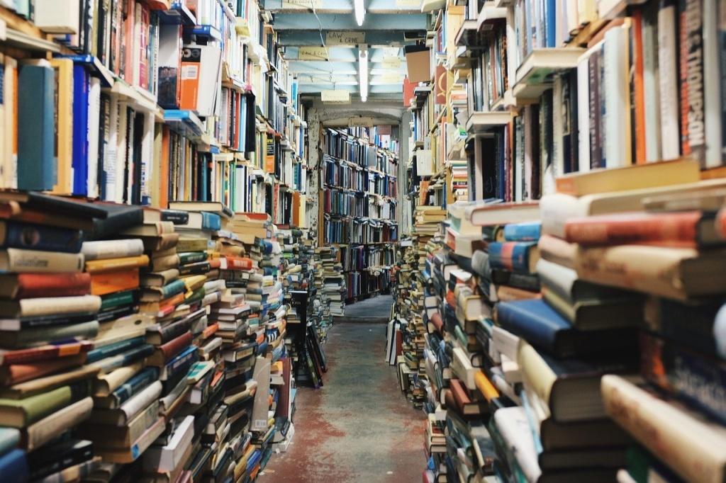 В эту субботу в библиотеке № 173 пройдет День открытых дверей